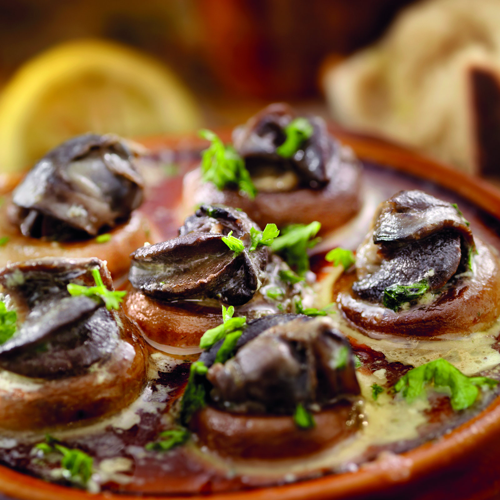 Escargot in Mushroom Caps with a Herb Butter, White Wine and Garlic Sauce with Fresh Parsle and Crusty French Bread -Photographed on Hasselblad H3D2-39mb Camera
